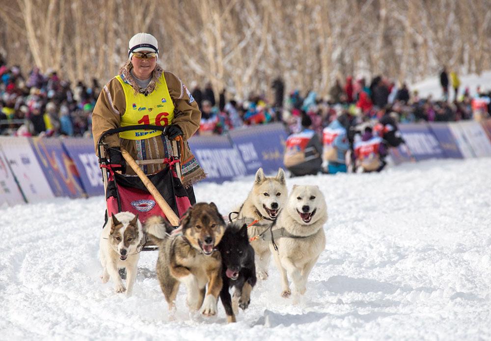 Perlombaan Anjing Iditarod 2014, Siberia Part I